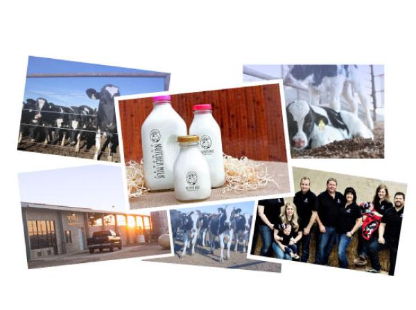 Nutcher Milk Company On-Site Photography by Farm To Shelf