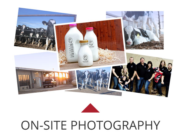 Nutcher Milk Photography
