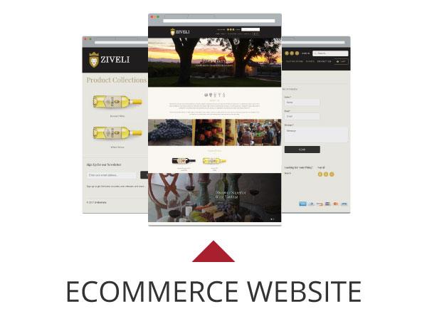 Ziveli Website