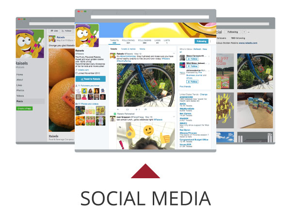 Raisels Social Media