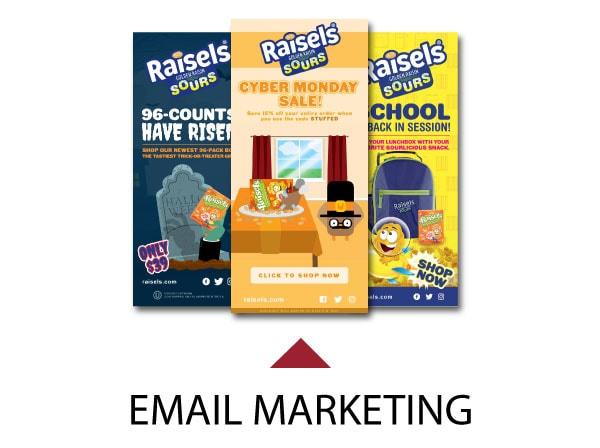 Raisels Email Marketing