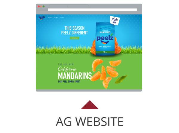 Peelz Website